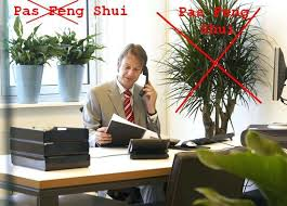 plante de bureau feng shui feng shui orientation bureau plantes