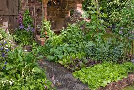 small vegetable and flower garden with rustic brick wall corner
