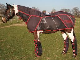 Rug Massage Equine Combi Pro Rug Massage U0026 Pulsed Electromagnetic Horse Blanket
