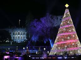 jones beach christmas lights 2017 melania trump leads 95th annual national christmas tree lighting