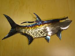 tarpon fish fly fishing fisherman swimming ocean flats texas