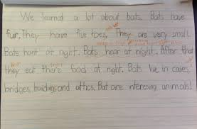 how to write a rough draft for a research paper bats nonfiction writing for second grade img 0096