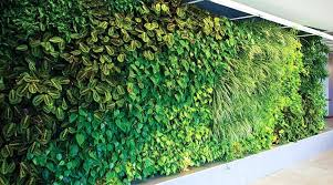 living wall planters living wall planters images outdoor the green