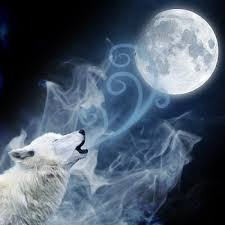 the cold wolf moon after the yule weekends in paradelle