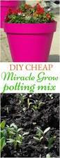 75 best 1 garden propagation images on pinterest gardening