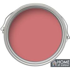 home of colour coral crush feature wall matt emulsion paint 1l