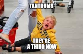 Tantrum Meme - tantrum store memes imgflip