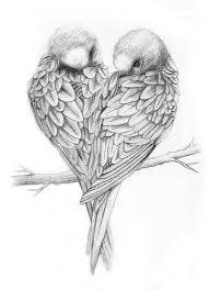 drawings of love birds love birds drawing love birds things