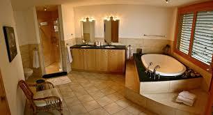 small bathroom luxury designs home pinterest large bathtubs