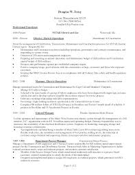 Construction Worker Sample Resume by Activity Director Resume Haadyaooverbayresort Com