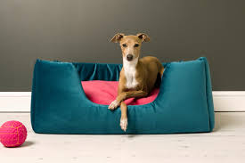 Covered Dog Bed Luxury Pet Products Home The Times U0026 The Sunday Times