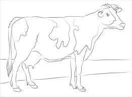 animal coloring pages u2013 25 free psd ai vector eps format