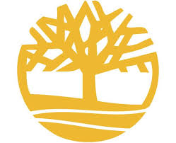 best 25 tree logos ideas on logo design simple brand