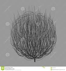 rolling tumbleweed royalty free stock images image 10193519