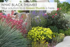 Green Thumb Landscape by Low Water Colorado Landscapes Anne Clark Design