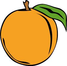 oranges clipart black and white peach clipart black and white free images clipartix