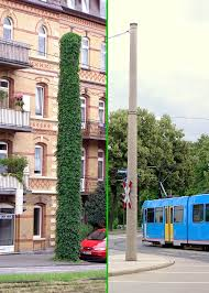 ivy covered power pole context sensitive traffic solutions