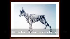 learn how to draw a realistic doberman step by step lesson 1