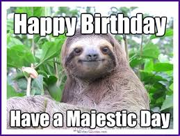 Memes Animals - happy birthday memes with funny cats dogs and cute animals