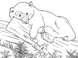 hard halloween coloring pages cute panda bear coloring pages
