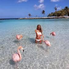 natural beauty style picsdecor com images insolites et drôles 254 beaches sunsets and sunrises