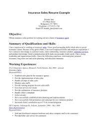 Sample Insurance Underwriter Resume by Real Estate Agent Resume Example Professional Curriculum Vitae