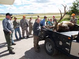 an impressive prize and a big relief 14 year old u0027s monster elk