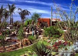 Arizona Landscape Ideas by 55 Best Arizona Landscaping Images On Pinterest Arizona