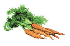 recettes cuisine michel guerard la recette des carottes 3 étoiles de michel guérard la croix