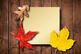 free photo autumn leaves colorful free image pixabay 1646799
