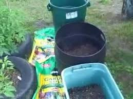 Container Gardening Potatoes - grow potatoes in container or trash garbage can 2012 gardening