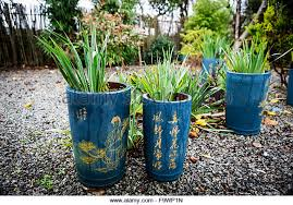 tall garden pots stock photos u0026 tall garden pots stock images alamy