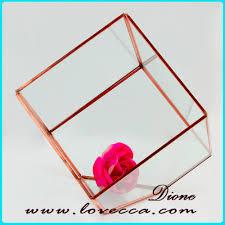 lovely copper metal frame hanging geometric glass terrarium rose