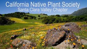 california native plant society an introduction to the cnps youtube channel youtube