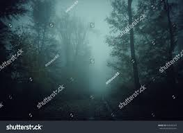 mystical halloween background dark scary forest path night surreal stock photo 658203343