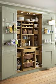 Kitchen Pantry Designs Pictures by 51 Pictures Of Kitchen Pantry Designs U0026 Ideas Kitchen Pantries
