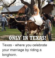 Texas Longhorn Memes - 25 best memes about longhorns longhorns memes