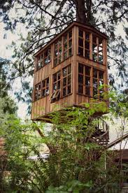 fun tree house designs house interior