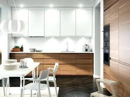 Ikea Kitchen Storage Cabinets In Cabinet Trash Can Ikea Kitchen Cabinet Storage Baskets Trash