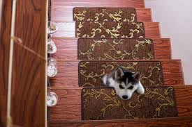 Pet Resistant Rugs Soloom Non Slip Stair Treads Carpet Indoor Set Of 13 Blended