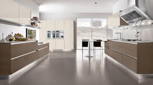 Contemporary Kitchen Contemporary Kitchen Wood Veneer High Gloss Lacquered