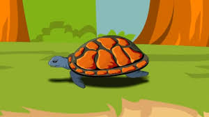 english poem for kids a little turtle youtube