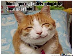 Smiling Cat Meme - smiling cat by williams meme center