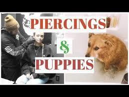 Bubble Bath Meme - getting pierced puppy bubble bath vlogmas 12 youtube