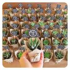 succulent wedding favors best 25 succulent party favors ideas on succulent