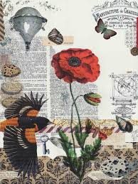 poppy writing paper collage dead cat creations collage 2015