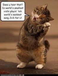 Smallest Violin Meme - world s smallest violin meme google search memes pinterest