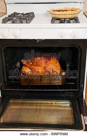 Roasting Chestnuts In Toaster Oven A Turkey Cooking In An Open Roasting Pan Inside An Oven Stock