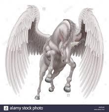 an illustration of a white pegasus unicorn mythological winged