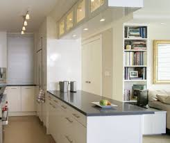 eye catching ideas kitchen cabinet doors only white unique kitchen
